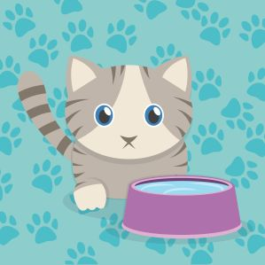 cartoon cat with water bowl